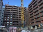ЖК Дом на Троицкой - ход строительства, фото 21, Февраль 2020